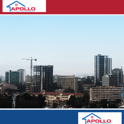 Apollo Real Estate & Property Management