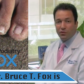 Dr. Bruce T. Fox